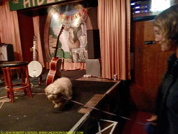 Joan Shelley exits with her dog, who'd been sitting on the back part of the stage throughout the show.